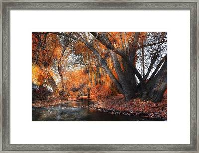 The Last Of Fall Framed Print by Thomas Born