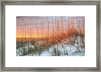 The Last Rays Framed Print by JC Findley