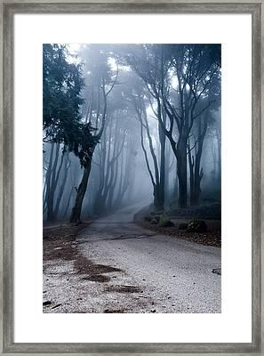The Last Road Framed Print