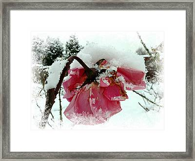 Framed Print featuring the mixed media The Last Rose by Morag Bates