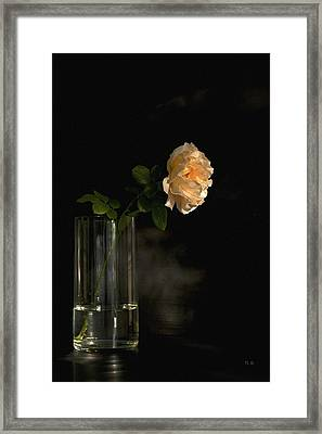The Last Rose Of Summer Framed Print by Theresa Tahara