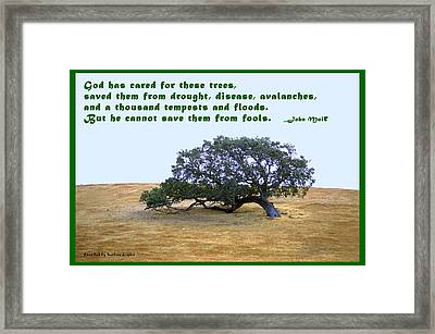 The Last Tree John Muir Quote Framed Print
