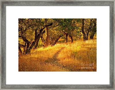 The Late Afternoon Walk Framed Print