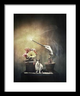 Illusionists Framed Prints