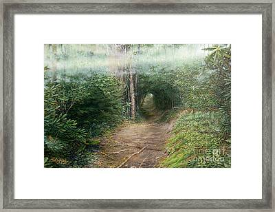 The Laurel Hells Framed Print