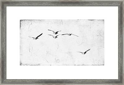 The Leader Framed Print by Rebecca Cozart