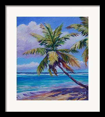 Bonaire Framed Prints