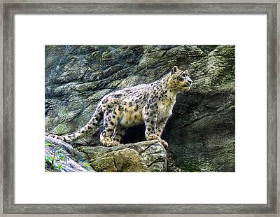 The Leap Framed Print by Glenn Feron