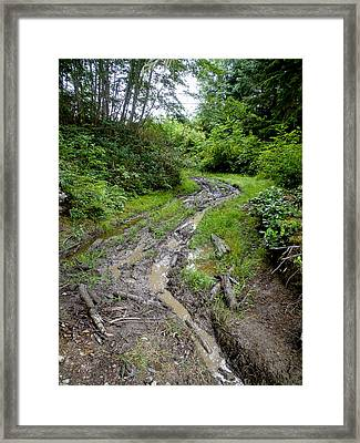The Ledge Point Trail Framed Print by Roxy Hurtubise