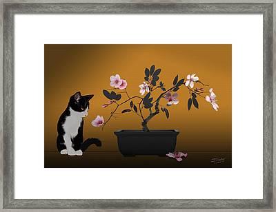 The Legend Of Maneki-neko  Framed Print