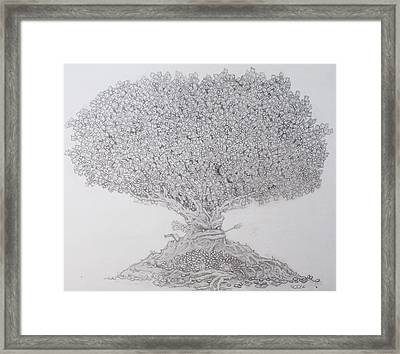 The Lending Tree Framed Print by Paul Calabrese