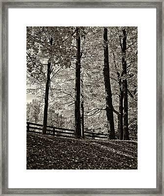 The Less Traveled Sepia Framed Print by Steve Harrington