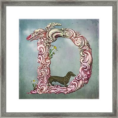 The Letter D Framed Print by Terry Fleckney