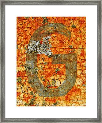 The Letter G With Lichens Framed Print by Chris Berry