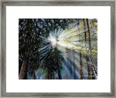 The Light In The Forest Framed Print by Deborah Fisher