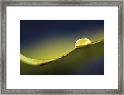 The Light Inside..  Let It Glow Framed Print