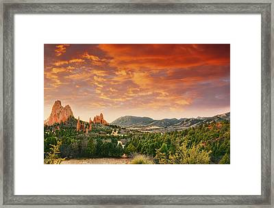 The Light Of Day Framed Print