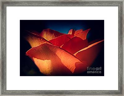 The Light Of Love Framed Print by Patricia Trudell