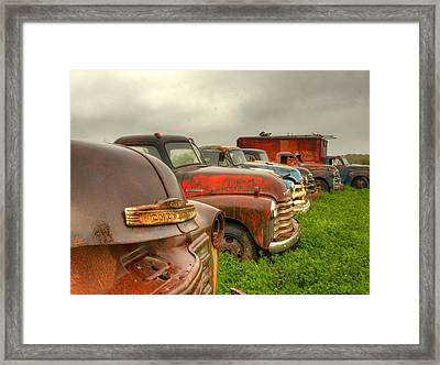The Line Up 1 Framed Print