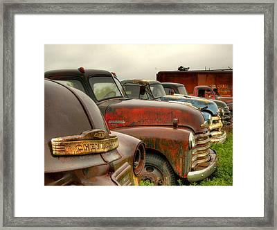 The Line Up 2 Framed Print