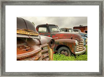 The Line Up 3 Framed Print by Thomas Young