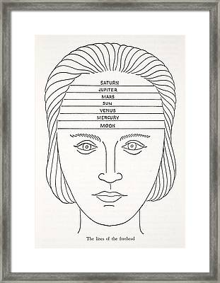 The Lines Of The Forehead Framed Print