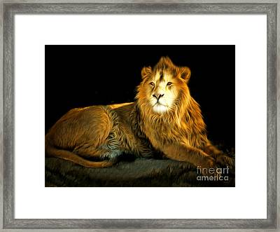 The Lion 201502113-2brun Framed Print by Wingsdomain Art and Photography