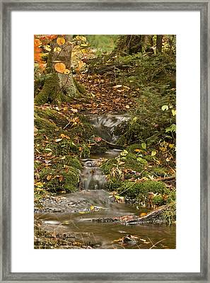 The Little Brook That Could Framed Print