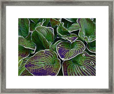 The Little Pond Framed Print