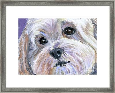The Little White Dog Framed Print by Hope Lane