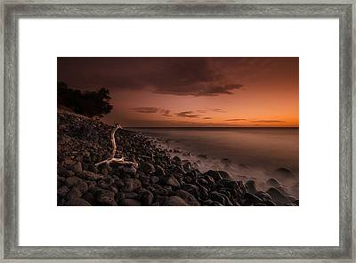 The Log And The Beach Framed Print
