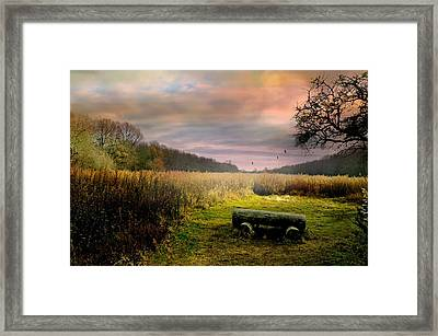 The Log Bench Framed Print by Diana Angstadt