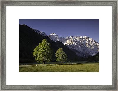 the Logar valley Framed Print by Davorin Mance
