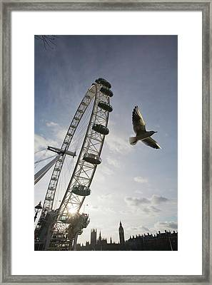 The London Eye Framed Print by Ashley Cooper
