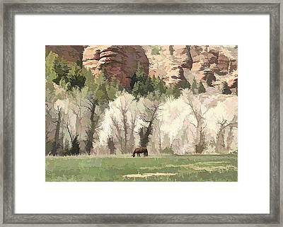 The Lone Horse Framed Print