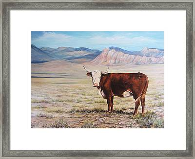 The Lone Range Framed Print