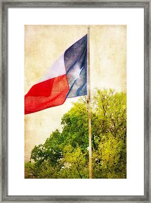 The Lone Star Flag Framed Print by Joan Bertucci