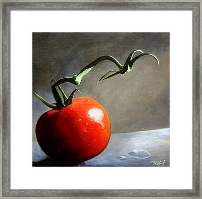 The Lone Tomato Framed Print