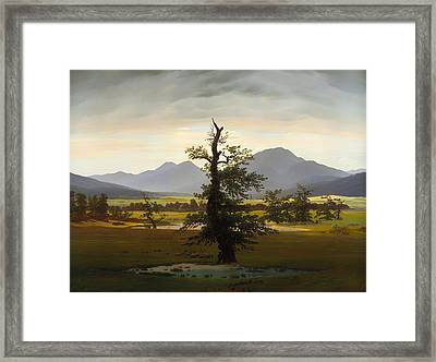 The Lone Tree Framed Print by Mountain Dreams