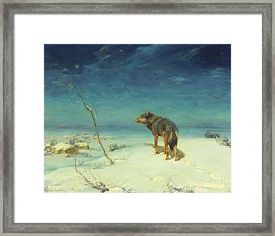 The Lone Wolf Framed Print by Pg Reproductions