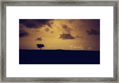 The Loneliness Of A Moorland Tree Framed Print by Chris Fletcher
