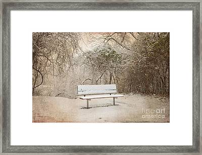 The Lonely Bench Framed Print by Betty LaRue