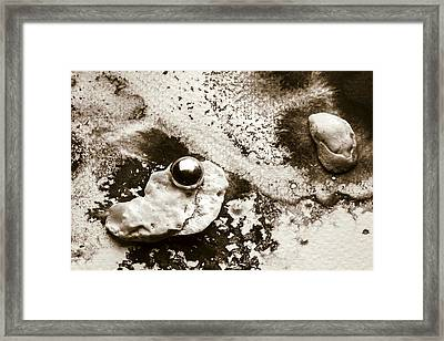 The Lonely Fish Framed Print