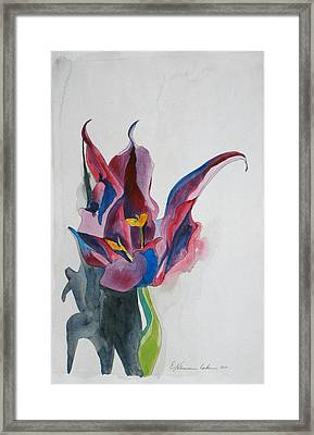 The Lonely Tulip Framed Print