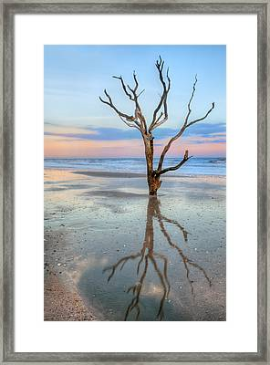 The Lonesome Tree Framed Print