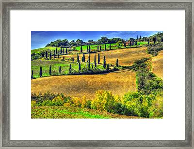 The Long And Winding Road Framed Print