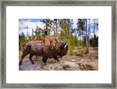 The Long Journey Framed Print by Dan Sproul