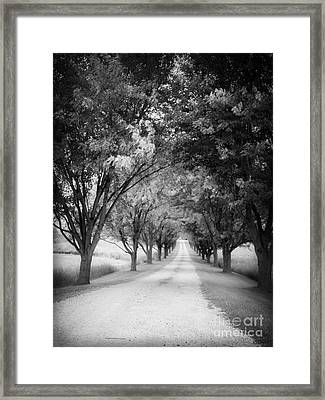 The Long Road Home Framed Print by Edward Fielding