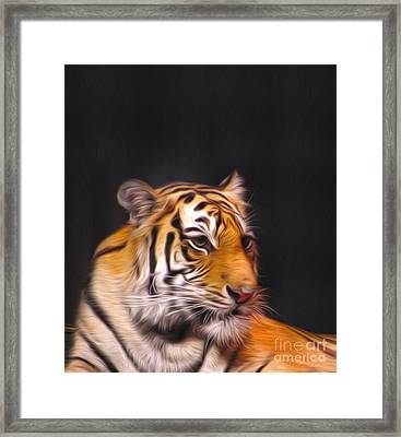 The Look Framed Print by Nur Roy