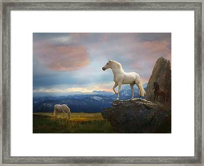 The Look Out Framed Print by Melinda Hughes-Berland